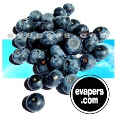 Blueberry (30ml)